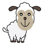 flashcard-animals-sheep