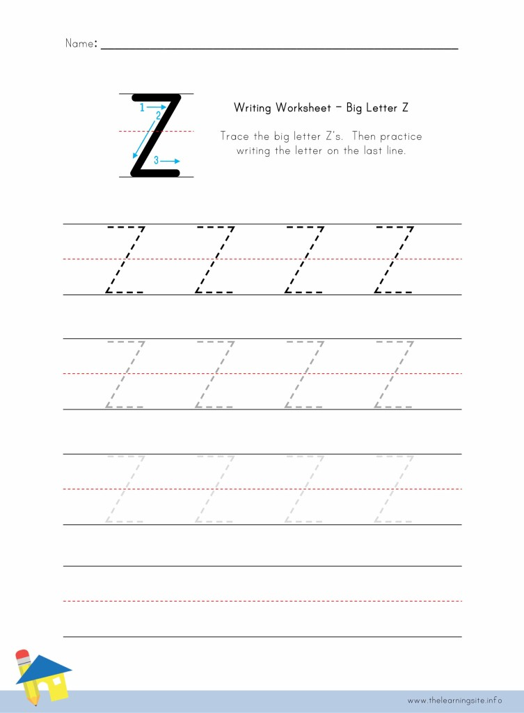 Big Letter Z Writing Worksheet
