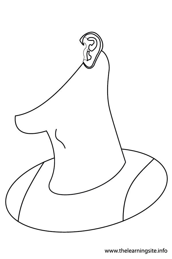 Female body outline coloring pages for Body outline coloring page