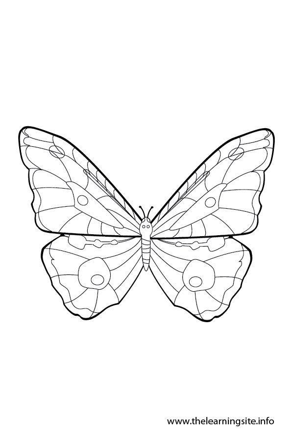 coloring-page-outline-insects-butterfly