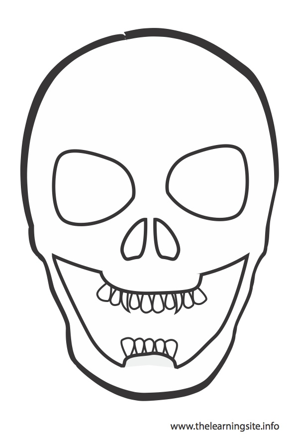 coloring-page-outline-skull