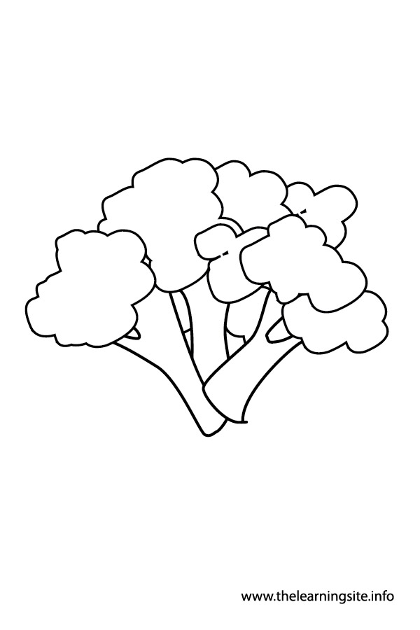 coloring-page-outline-vegetables-broccoli