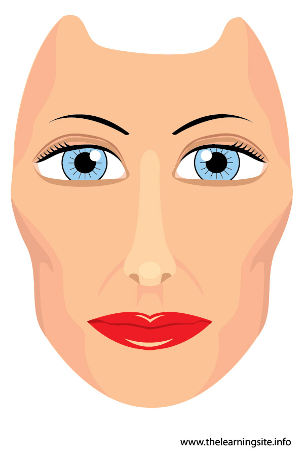 flashcard-body parts-face-01