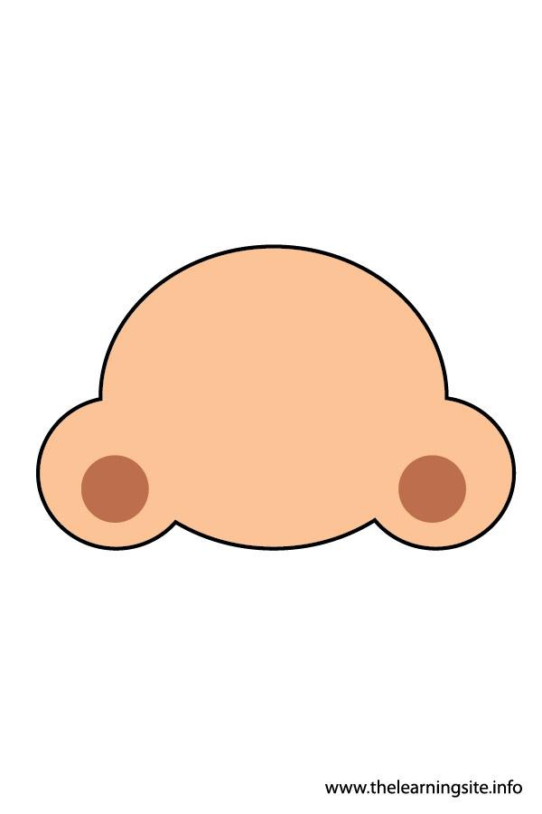 flashcard-body parts-nose2-01