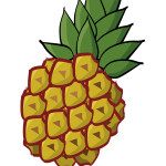 flashcard-pineapple