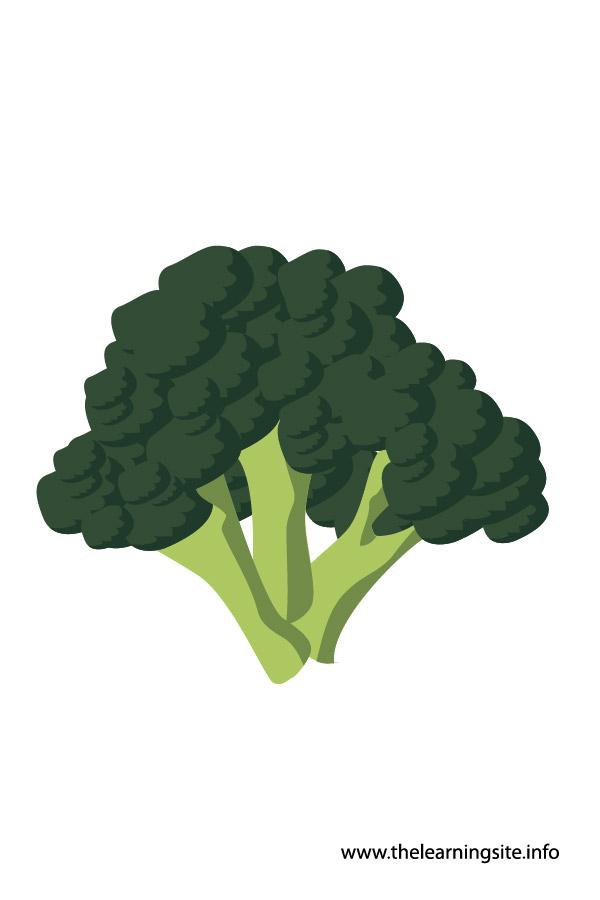 flashcard-vegetables broccoli