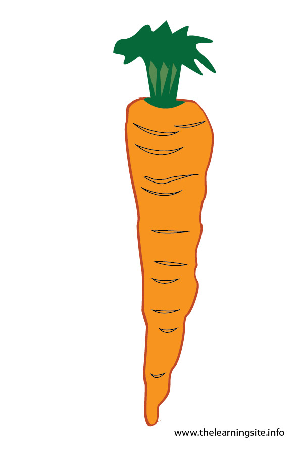 flashcard-vegetables carrot