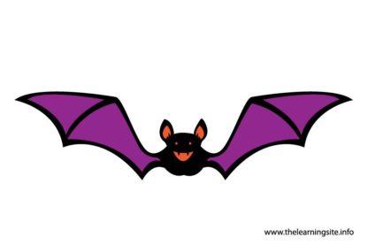flashcard-bat