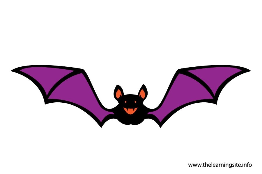 flashcard-bat