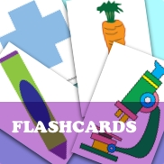 Body Part Flashcards