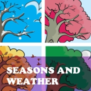 Season and Weather Flashcards