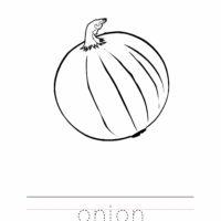 Onion Coloring Worksheet