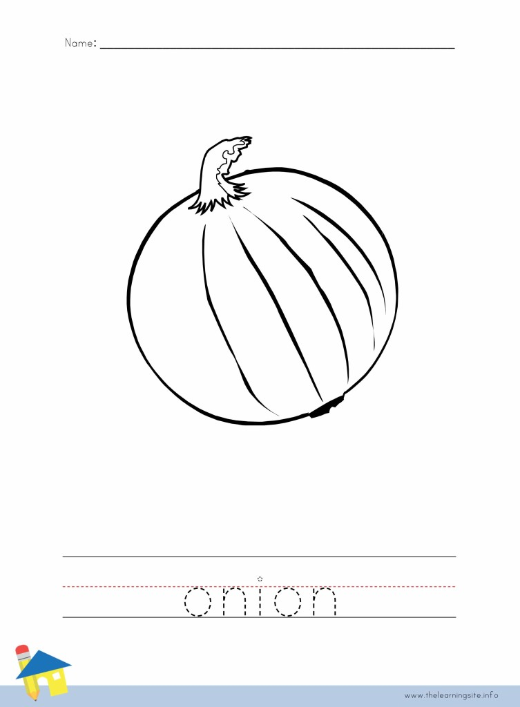 Onion Coloring Page Outline
