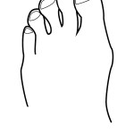 outline-body parts-toes-01