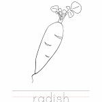 Radish Coloring Worksheet
