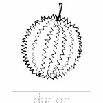 Durian Coloring Page Outline