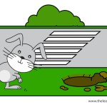 flashcard-preposition-toward-rabbit-running-towards-the-rabbit-hole