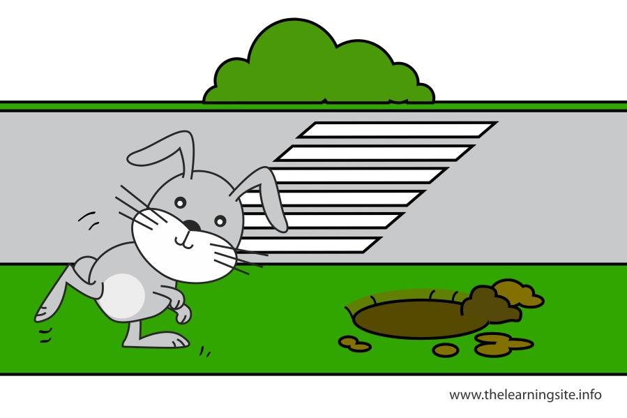 flashcard-preposition-toward-rabbit-running-towards-the-rabbit-hole
