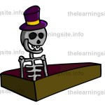 flashcard-skeleton-sample