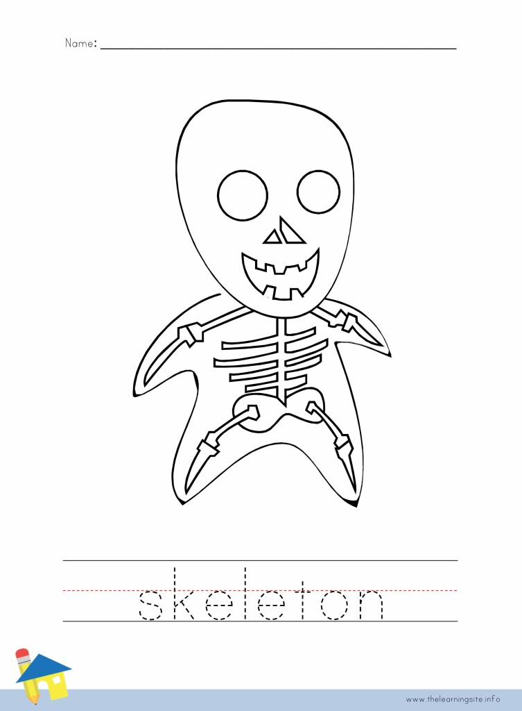 Pics Photos - Images Axial Skeleton Worksheet Doc Wallpaper