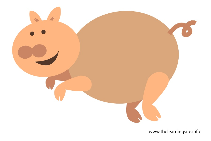 flashcard-animals-pig