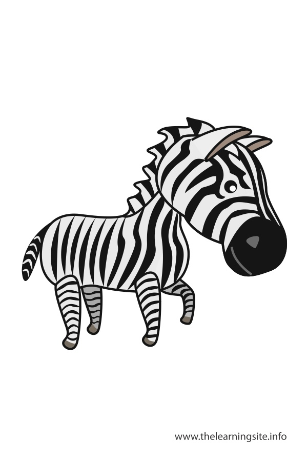 flashcard-animals-zebra