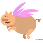 flashcard-flying-pig