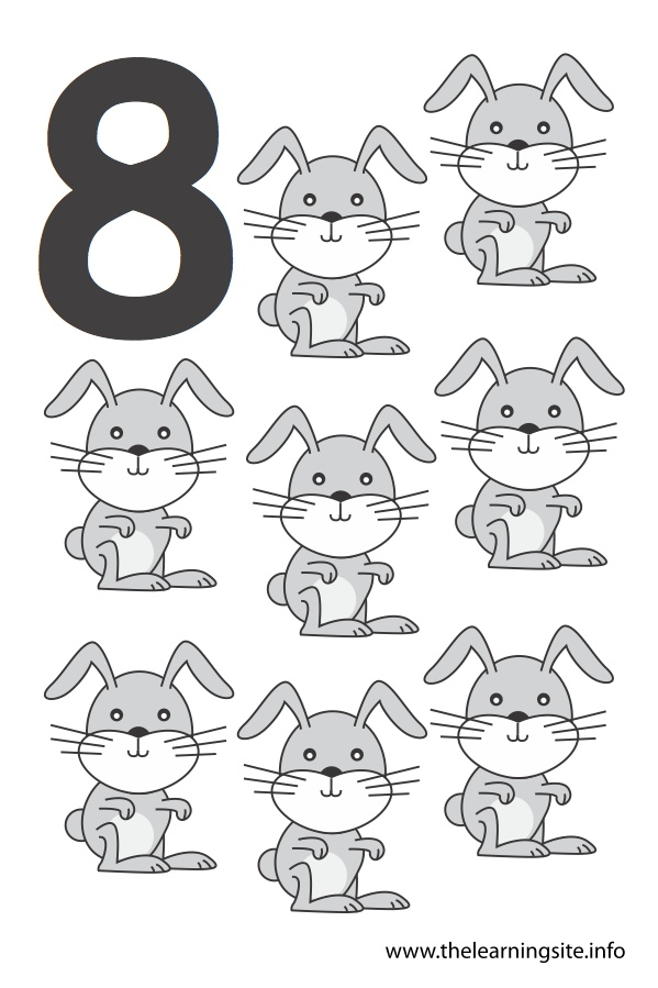 flashcard number eight rabbits