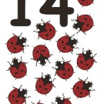 flashcard-number-fourteen-ladybugs