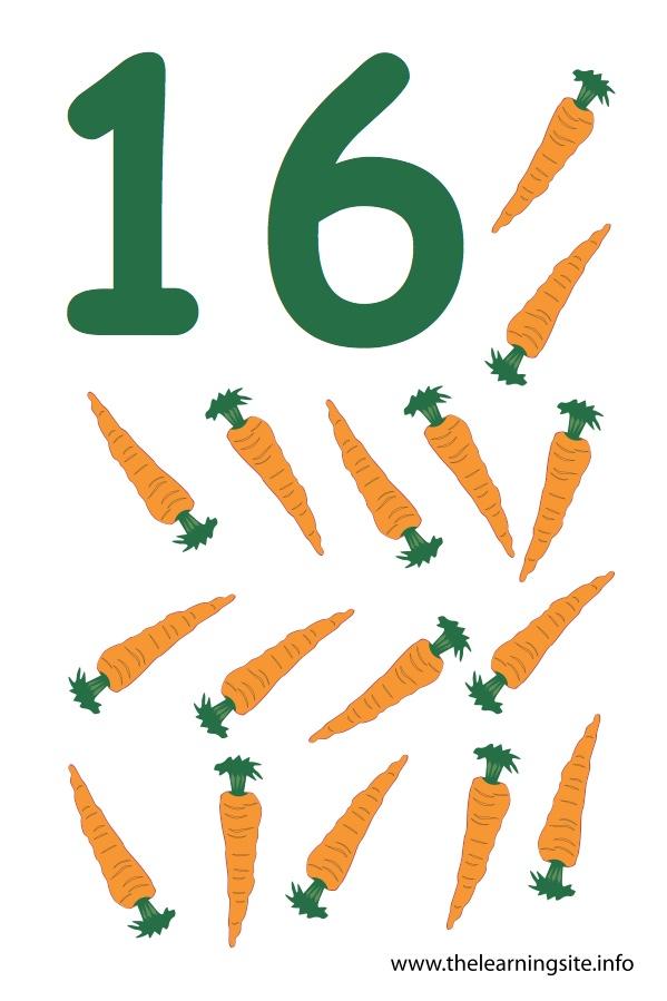 Number Sixteen Flashcard – 16 Carrots