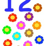 flashcard-number-twelve-flowers