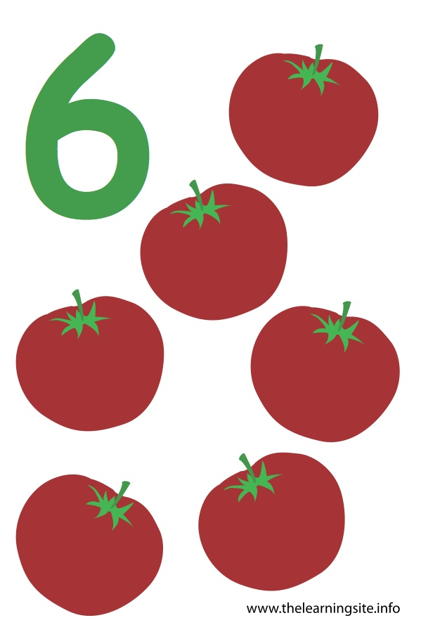 flashcard-number-six-tomatoes