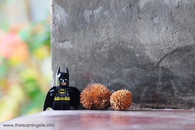 Batman, Lego the Movie