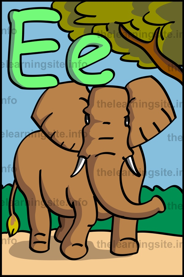 flashcard-alphabet-letter-e-elephant-sample