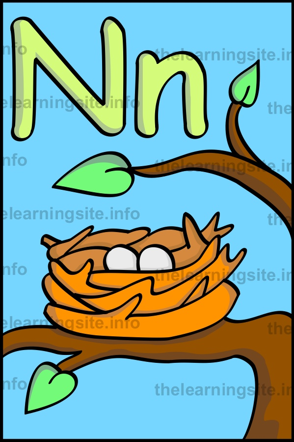 flashcard-alphabet-letter-n-nest-sample