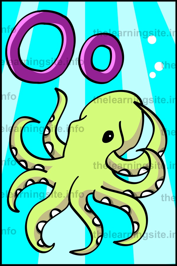 flashcard-alphabet-letter-o-octopus-sample