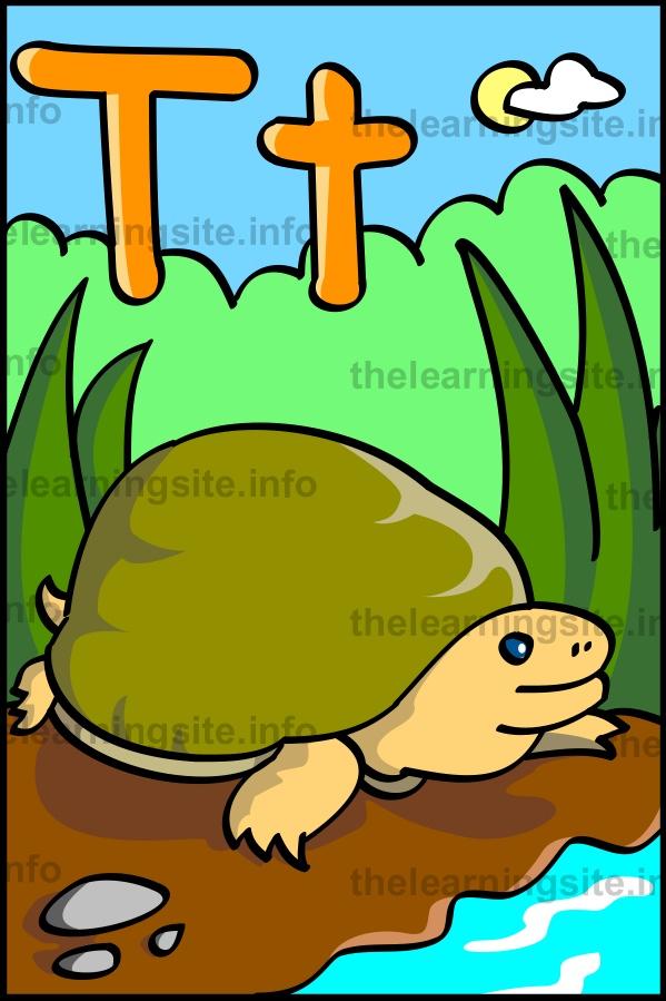 flashcard-alphabet-letter-t-turtle-sample