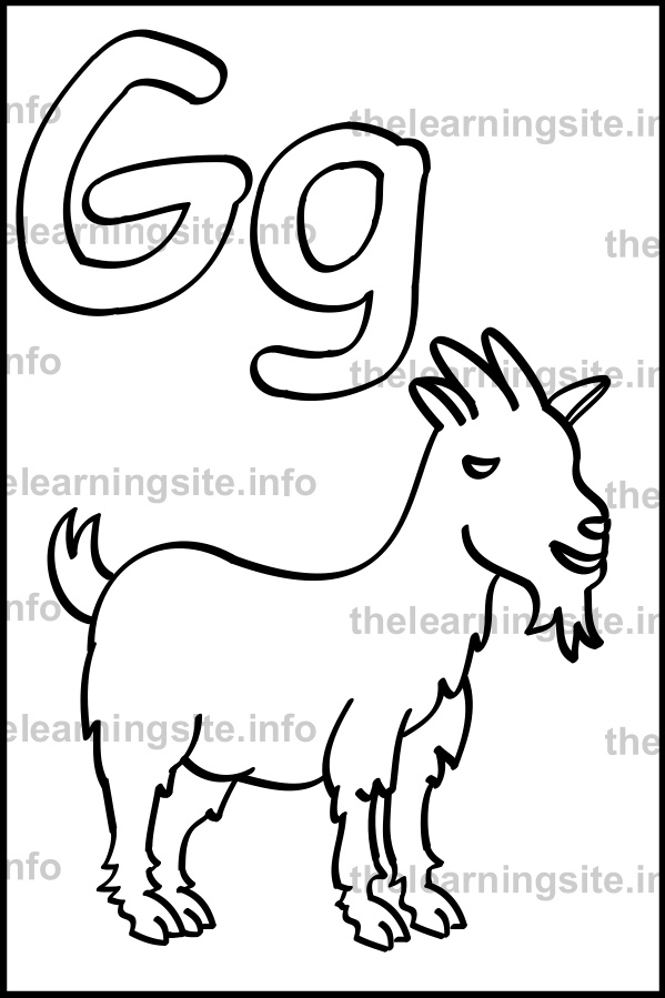 coloring-page-outline-alphabet-letter-g-simple-goat-sample