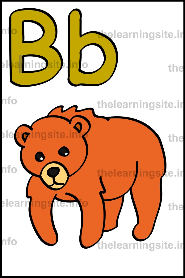 flashcard-alphabet-letter-b-simple-bear-sample
