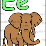 flashcard-alphabet-letter-e-simple-elephant-sample