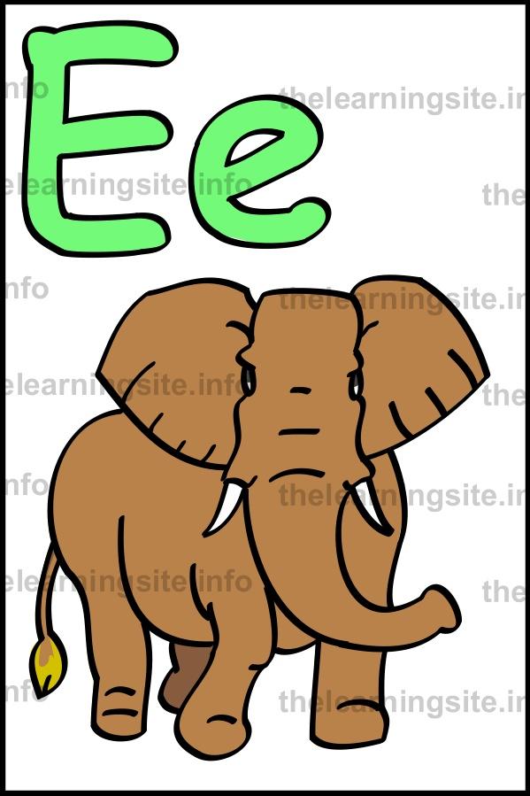 flashcard-alphabet-letter-e-simple-elephant-sample