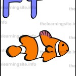 flashcard-alphabet-letter-f-simple-fish-sample