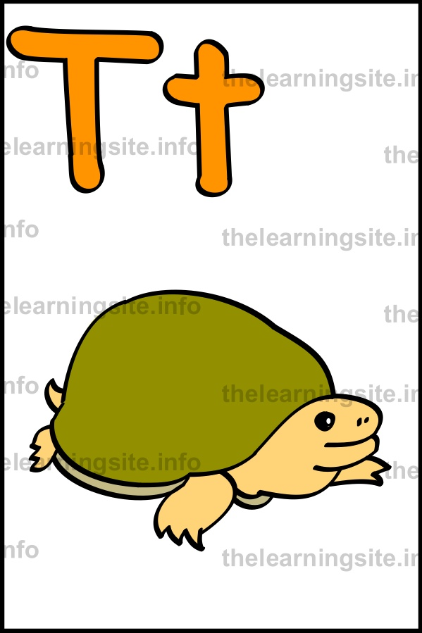 flashcard-alphabet-letter-t-simple-turtle-sample