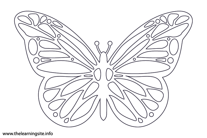 Animal Adjective Colorful Butterfly Coloring Page Flashcard Illustration