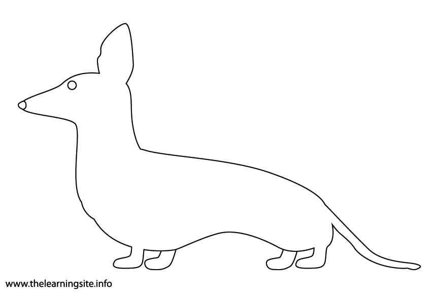 Animal Adjective Short Dachshund Coloring Page Flashcard Illustration