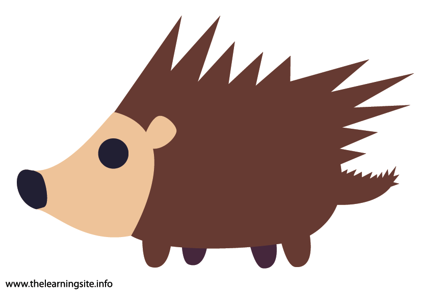 Animal Adjective Spikey Porcupine Flashcard Illustration