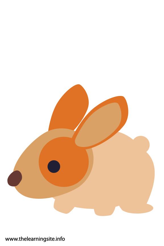 Easter Bunny Rabbit Flashcard Illustration
