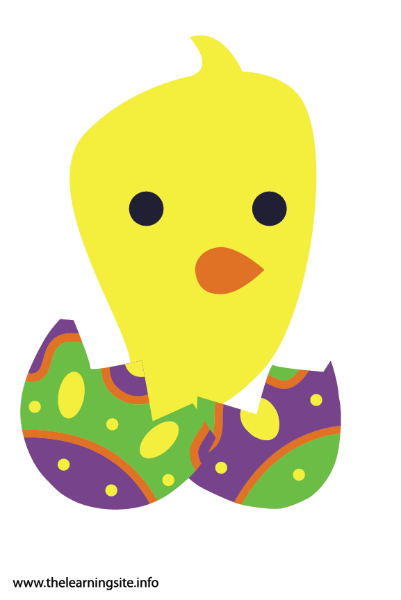 Easter Chick and Egg Flashcard Illustration