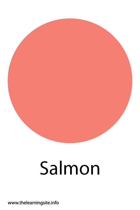 Salmon Color Flashcard Illustration