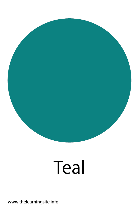 Teal Color Flashcard Illustration